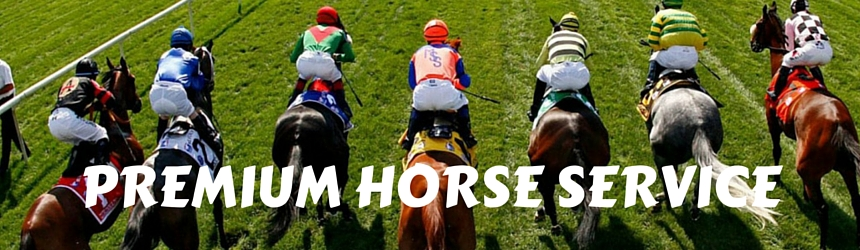 4ThePunters Horse Racing Tips
