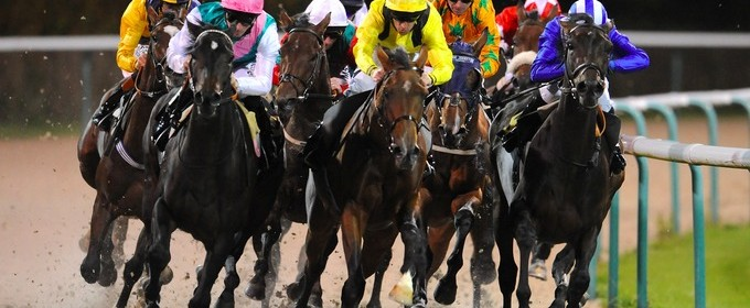All Weather Horse Racing Tips